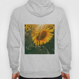 summer in the fields Hoody