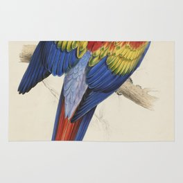 Vintage Illustration of a Macaw Parrot (1832) Rug
