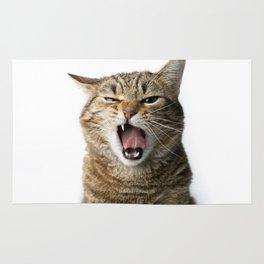 Crazy Cat Rug