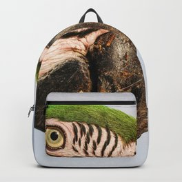 Macaw Close up Backpack