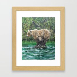 Bear Today, Gone Tomorrow? Framed Art Print
