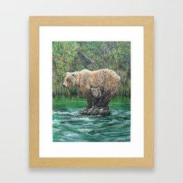 Bear Today, Gone Tomorrow? Framed Art Print