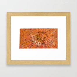Tangerine Flower Mandala Framed Art Print