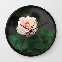 Flower Photography by Raspopova Marina Wall Clock
