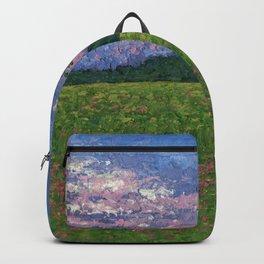 Emergence of Spring Backpack