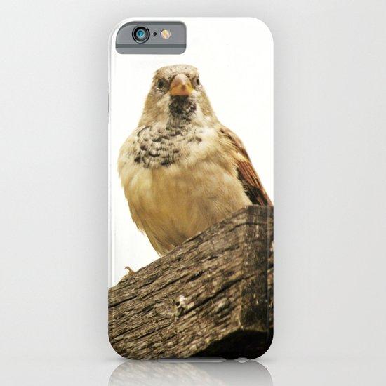Preparing for Flight iPhone & iPod Case