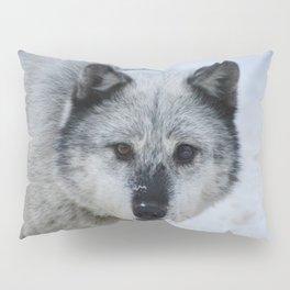 Lone wolf roams the Canadian Rockies Pillow Sham