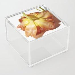 Face down bloom Acrylic Box