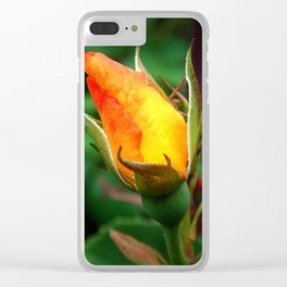 Rose Bud 37 Clear iPhone Case