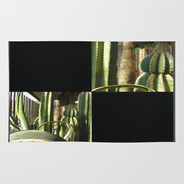 Cactus Garden Blank Q2F0 Rug