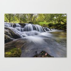 Mountian Water  Canvas Print
