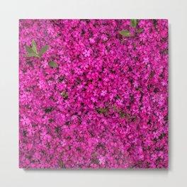 Flowerbed x Deep Pink Metal Print
