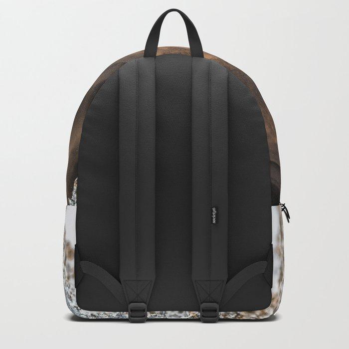 Multi colored agate slice Backpack