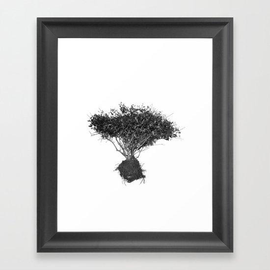 Floating Shrubbery Framed Art Print