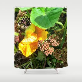 OH MY GOURD Shower Curtain