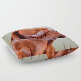 Fashion Dogue de Bordeaux Floor Pillow