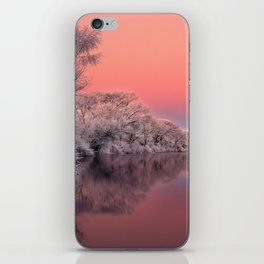 Color of Winter iPhone Skin