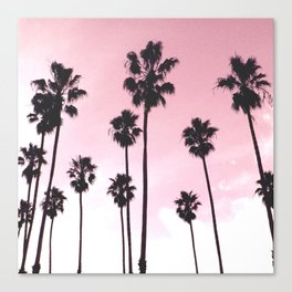 Palms & Sunset Canvas Print