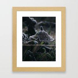Winter in Wonderland Framed Art Print