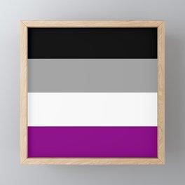 Flag of asexuality Framed Mini Art Print