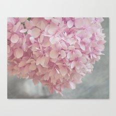 Delicate, pastel pink hydrangea flower Canvas Print
