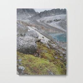 AK Pennyroyal Glacier Metal Print
