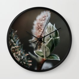 Grey Willow Photo   Nature Flower Photography   Grey Leaved Sallow  Wall Clock
