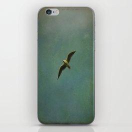 Vintage Flight iPhone Skin