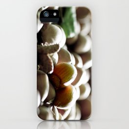 Hazelnuts in the forest iPhone Case