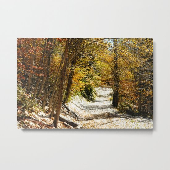 The First Snow Metal Print
