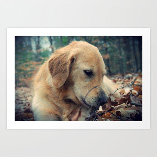 Sweet Dog Art Print
