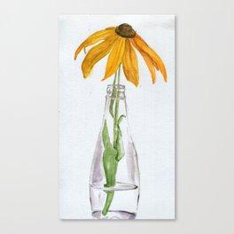 Solar Solo Canvas Print