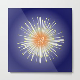 Celebration Firework Metal Print