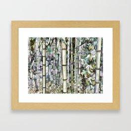 Bamboo grove in a botanical garden Framed Art Print