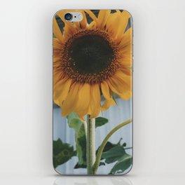Sunny Smiles iPhone Skin