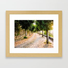 Way to town Framed Art Print