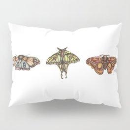 Three Moths Pillow Sham