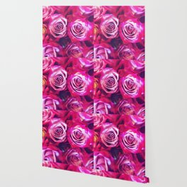 Love Roses! Wallpaper