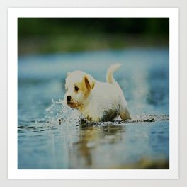 Splish - Splash, puddles are fun Art Print