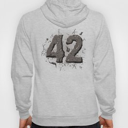 42 stone Hoody