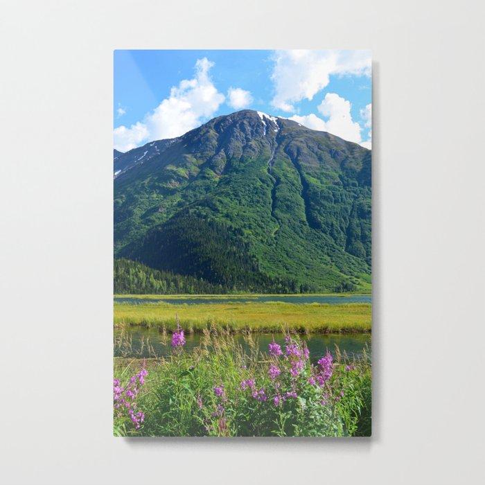 July at Tern Lake Metal Print
