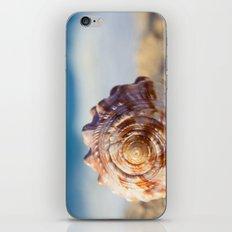Hawaii Gentle Breeze iPhone & iPod Skin