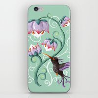 hummingbird iPhone & iPod Skins featuring Hummingbird by Freeminds