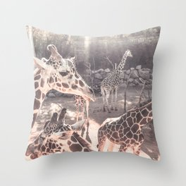 Giraffes // Spotted Long Neck Graceful Creatures in Wildlife Preserve Throw Pillow