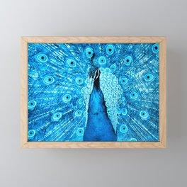 Peacock Framed Mini Art Print