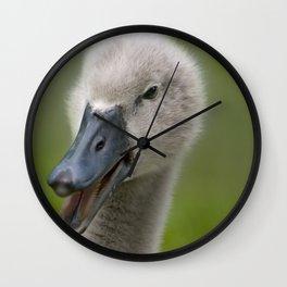 Happy Quacky Cygnet Wall Clock