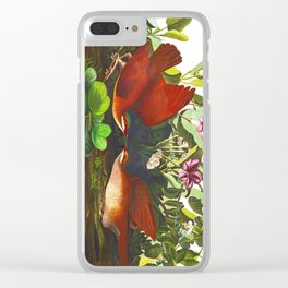 Key-west Dove Clear iPhone Case