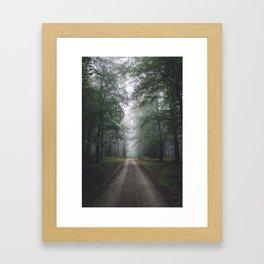 Autumn Forest Walk Framed Art Print