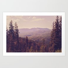 The View Art Print