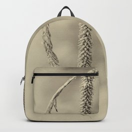 hang around Backpack